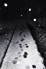 (noiseburst) Tags: uk snow film bristol plus hp5 february ilford 2012