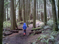 Adventure trail in the snow (Jeff Youngstrom) Tags: nathan issaquah adventuretrail