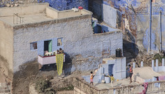 rooftop cricket (Steve Dinicol) Tags: city travel blue roof india asia south cricket rajasthan jodhpur