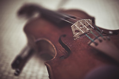 Violin (In my entirety) Tags: bridge music canon eos 50mm mark f14 full ii violin bow frame instrument 5d strings usm ef