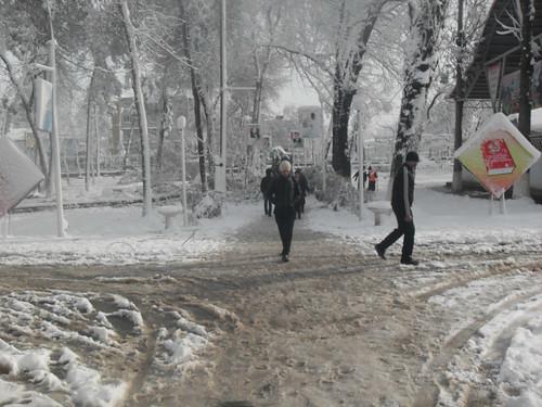 Последствия снегопада в Курган-тюбе (18)