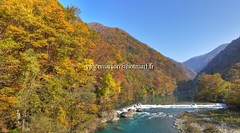 Dakigaeri005 (vincemarion) Tags: red fall nature japan automne river landscape rouge maple autumnleaves momiji paysage tohoku japon feuille koyo erable akitaprefecture dakigaerivalley couleurautomnale
