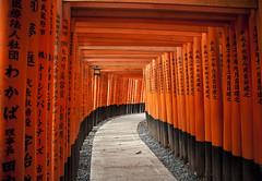 Fushimi Inari-Taisha (Alberto Sen (www.albertosen.es)) Tags: flickrandroidapp:filter=none