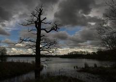 Cold comfort (Ivorbean) Tags: nikon moody cloudy reservoir photoart d800 pitsfordwater moodyskies nikond800 ivorbean wwwdallowphotoartcom