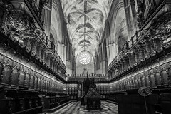 Details! #2 (BoXed_FisH) Tags: travel blackandwhite bw church monochrome architecture grey mono sevilla andaluca spain europe cathedral interior sony details wideangle monotone seville es sonyzeiss sonya7 sel1635z sony1635mmvariotessartfef4zaoss sonyzeiss1635f4oss