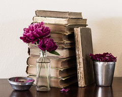 IMG_7698.jpg (coppercurls55) Tags: pink flowers stilllife flower color colour colors books peony antiques kkpause
