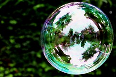 Bubble (Kellyphotography__) Tags: summer colour detail cute water closeup mirror round bubble bold