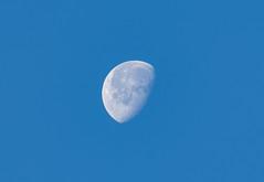 Early Morning Moon (JThompson88) Tags: morning sky moon canon dusk space astronomy tamron canonphotos canon7d canon7dmkii