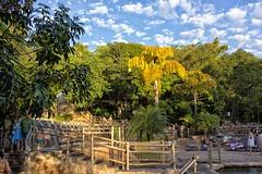 Rio Quente 2 (deltafrut) Tags: brasil gois caldasnovas pousadadorioquente rioquenteresorts
