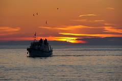 Croatia (Yann OG) Tags: sunset sea cloud sun mer bird soleil boat croatia nuage bateau rovinj oiseau coucherdesoleil croatie