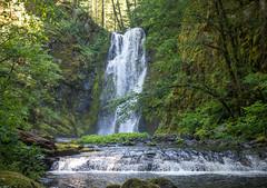 Chinook Falls (Jeffery P.) Tags: creek waterfall washington peak falls siouxon giffordpinchotnationalforest siouxonpeakloophike