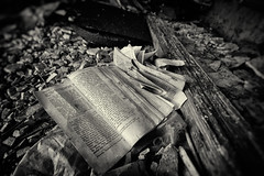 discarded bible monochrome (SubSeaSniper) Tags: abandoned monochrome decay wideangle bible discarded atmospheric sigmalens canoneos7d