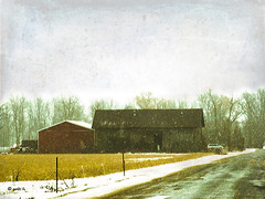 Snowy Afternoon (gabi-h) Tags: road trees winter sky snow ontario barn rural fence farm princeedwardcounty gabih skeletalmess