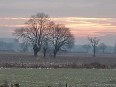 winter 2012 (ellyko2010) Tags: dag februari winterse