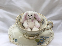 Teacup Teddy <3 (ToyAddict ~ Neverland) Tags: amy teddy petal teacup lilley