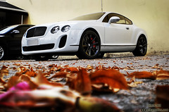 Bentley Continental GT SuperSports (Andre.Siloto) Tags: