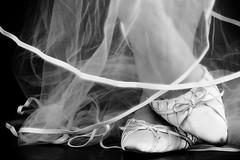 Day 26: Shoes (KateRhodes) Tags: uk wedding selfportrait female canon bride shoes veil cumbria 365 bridal carlisle weddingshoes project365 katerhodes