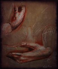 las manos de Leonardo