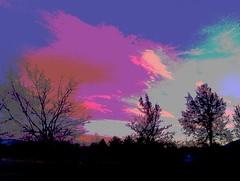 IMAG2409_Tree Line (STPhotographyCapturingLight) Tags: sunset mountains tree art clouds landscape photography design architechture unitedstates roadtrip canvas smartphone highart htc renonevada experimentalphotography hatcreek featherlake 20x30matt