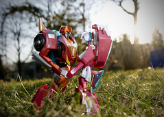 02.09.12 (Matthew Tsang) Tags: toys tokina transformers hotrod animated 1224mm sunflare rodimus arcee