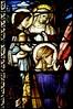 Glasraam Katholieke Kerk - 245 (CredoCast) Tags: windows window glass stained kerk heiligen glasraam heilige katholieke defensio glasramen fidei apologetica apologetiek