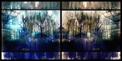 Coming Back from the Dark, Dark (sslyb) Tags: trees yard capemay ipad vividimagination iniciatic awardtree capeislandcreekpreserve iphonehipstamatic ipaddiptic ipadblender ipadpixlromatic ipadsnapseed