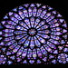 "Notre Dame Rose Window • <a style=""font-size:0.8em;"" href=""http://www.flickr.com/photos/26088968@N02/6906943467/"" target=""_blank"">View on Flickr</a>"