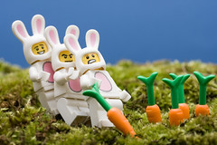 Lego Easter Bunnies (Sad Old Biker) Tags: pictures desktop uk wallpaper bunny bunnies easter poster toy photo funny sale lol background awesome 7 images romance best card carrot buy series minifig lmao ever coolest cutest turnip fable enormous rofl kevinpoulton sadoldbiker finniest