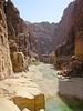 Wadi Mujib Nature Reserve