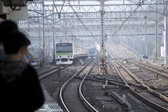 (quashlo) Tags: train tokyo metro platform  kanda  yamanoteline rapidtransit  jreast   tokyoprefecture  jr  keihintohokuline   eastjapanrailwaycompany jr kandastation  chiyodaward