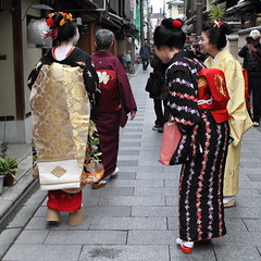 Kyoto street watching (Teruhide Tomori) Tags: japan kyoto traditional maiko 京都 日本 kimono obi 着物 miyagawacho higashiyama 舞妓 帯 misedashi 見世出し toshimomo とし桃