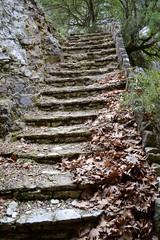 -  (Eleanna Kounoupa) Tags: bridge nature greece epirus      nationalparkofvikosaoou