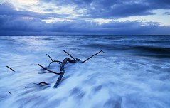 Swamped - Bribie Island QLD (Mark Wassell) Tags: ocean seascape beach water sunrise landscape australia driftwood queensland bribieisland waterflow