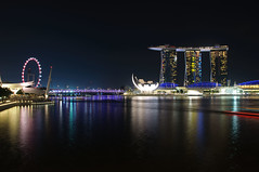 DSC_2393 (Abe Pogigraphy) Tags: chicken night marina reflections lights bay singapore cityscape nightscape rice lotus sigma esplanade sands merlion 18200mm d90