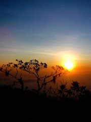 Fresh morning at Mount Gedung (RickyLiew) Tags: morning sunrise tahan gedung
