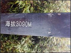 DSC07256