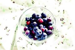Blueberries (Frank Reussner) Tags: food fruit germany blueberry decke blau frucht blueberries frchte frisch lecker obst schale gesundheit lebensmittel frische blaubeeren heidelbeere heidelbeeren blaubeer friuits deckchen gefs frchte gef
