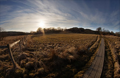 afternoon sun (johanbe) Tags: light sunset sky field nikon solnedgng d90 flt samyang nikond90