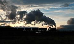 Last Trip of the Day (Kingmoor Klickr) Tags: sunset heritage industry industrial railway steam cannockchase brownhills chasewaterrailway hunslet 3783 staffordhsire gordonedgar hollybankno3