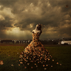 the leaves of linden avenue (brookeshaden) Tags: storm field leaves sunshine leaf wind farm fineartphotography amishcountry surrealphotography brookeshaden