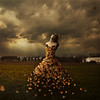 the leaves of linden avenue (brookeshaden) Tags: storm field leaves sunshine leaf wind farm fineartphotography amishcountry surrealphotography brookeshaden texturesbylesbrumes inspiredbymaggietaylor