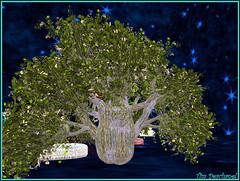 Tresorier Constantine (Tim Deschanel) Tags: life tree tim avatar constantine sl second arbre deschanel tresorier npirl