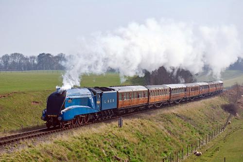 Bittern - Severn Valley splendour (geoffspages) Tags: geotagged shropshire railway steam a4 bittern severnvalley gresley 4464 eardington geo:lat=52509656145453285 geo:lon=24053636041260233