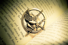 The symbol of the revolution. The Mockingjay.