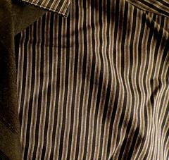 His Shirts and Ties (Renee Rendler-Kaplan) Tags: shirt canon spring clothing colorful gbrearview stripes tie series tweed gapersblock wbez menswear chicagoist workingit blackandbrown dresswear donaldrendlerkaplan canonpowershotsx40hs ifyouseehimsayhello myweekdayartproject justlikeheis