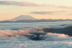Mt. St. Helens (teresahunt2126) Tags: morning sky mountains nature clouds oregon forest sunrise outdoors viewpoint mtsthelens columbiarivergorge mountainrange larchmountain willamettevalley cascademountainrange