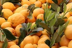 Zitrone (aminasalihovic) Tags: markt frucht zitrone gesund cartafotografica2016 kulturtage2016
