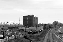 Locate CN TOWER