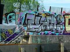 Graffiti Trackside (oerendhard1) Tags: street urban art graffiti rotterdam ominous chrome vandalism traintrack ons trackside putas omin oods eviks