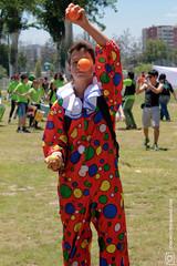 Malabares (Gonzalo Caro Acevedo) Tags: colors festival ball circo circus pelotas juggle malabares ddhh